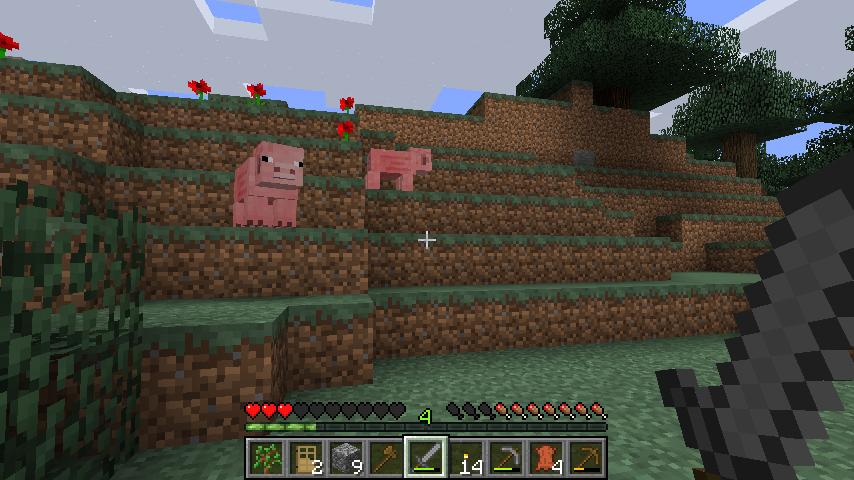Les cochons donnent des steaks